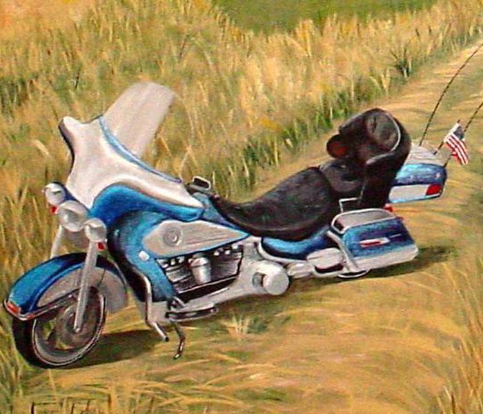 Harley Davidson Bar And Shield Vinyl Wall Murals Pixers We